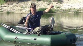 Река Дон  Вечерняя рыбалка   10 июня 2020