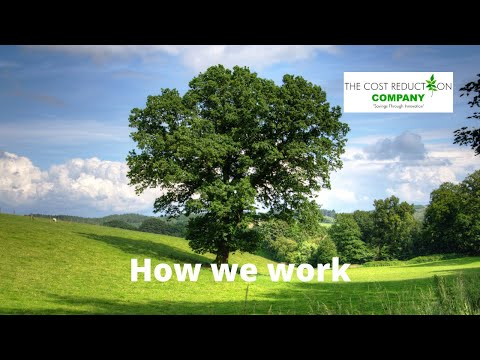 The Cost Reduction Company - How we work
