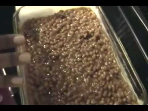 Simple Cooking With Sandy: Pork & Beans W/ Ground Beef