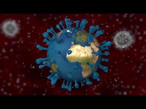 Download ¿Qué es un virus?   AFP Animé