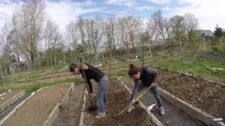 Aventura Irlandesa #16 - Voluntariado en Ballyneety con helpx / workaway