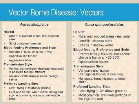 Vector Borne Disease Risk Mapping in Mobile County, Alabama