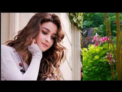 romantic-hindi-songs-2017---latest-bollywood-love-songs-2017---hindi-love-songs-2017---audio-jukebox