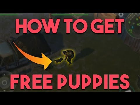 HOW TO GET FREE PUPPIES  |  LAST DAY ON EARTH: SURVIVAL