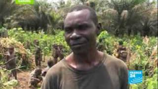 Pygmies: endangered people