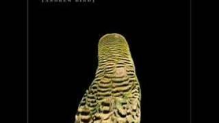 Andrew Bird - Dark matter