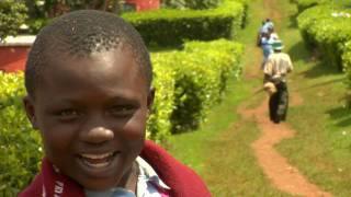 BU in Kenya, Part 3 of 3: Kericho's Big Lessons