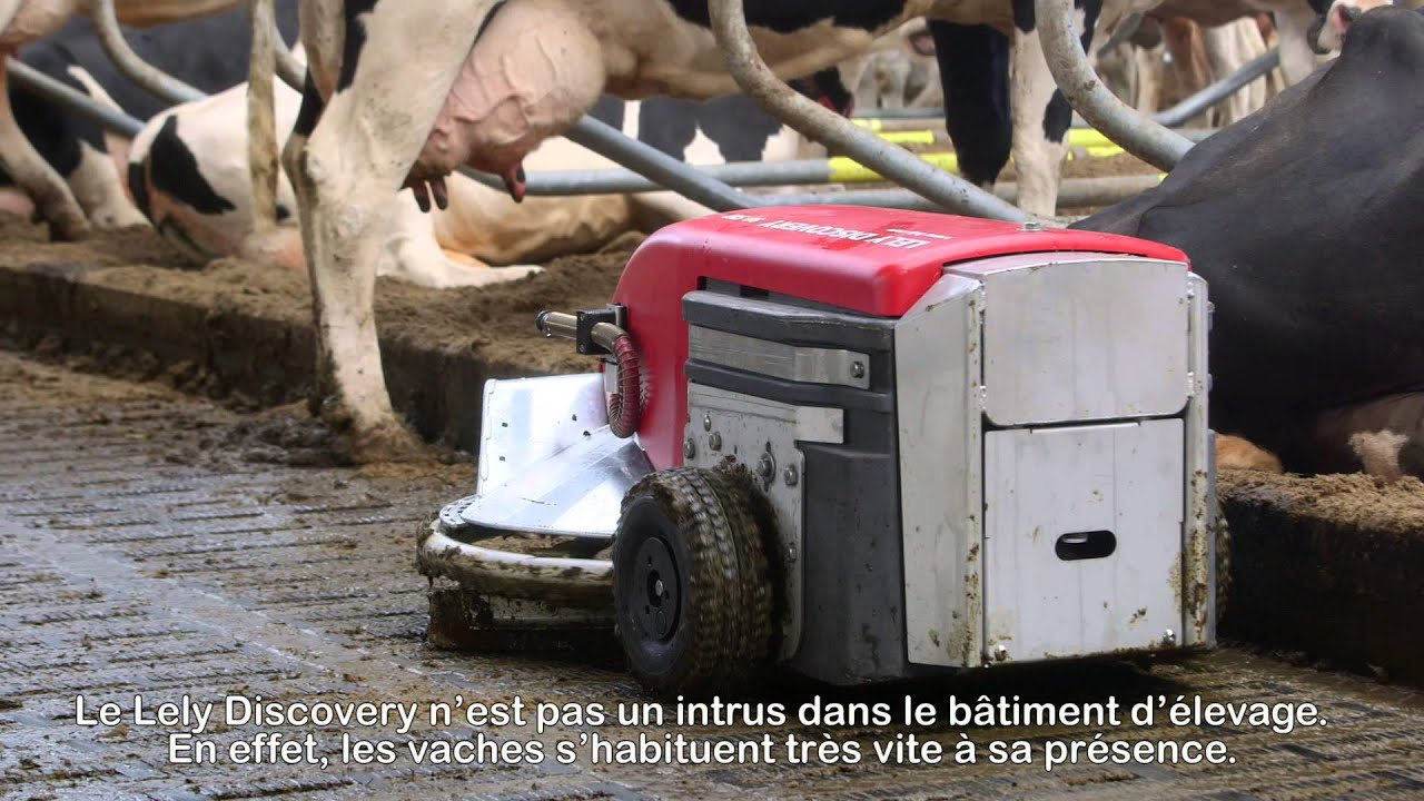 Lely Discovery 90SW - Testimonial Jack Nicolaes (French / the Netherlands)