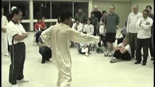 Master Chen Youze - 尊古 Zun gu Taijiquan