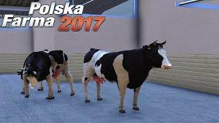 Gospodarstwo ze zwierzętami - Polska Farma 2017 (#11) | gameplay pl