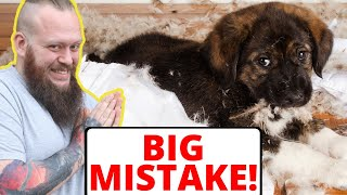The BIGGEST Mistake People Make With Their Puppy