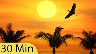Sleeping Music, Calming, Music for Stress Relief, Relaxation Music, 30 Minute Sleep Music, ☯645B