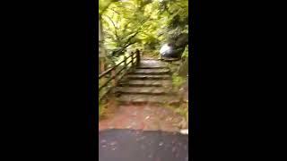 [旅行]竜吟の滝 一の滝から二の滝へ歩くだけの3分間