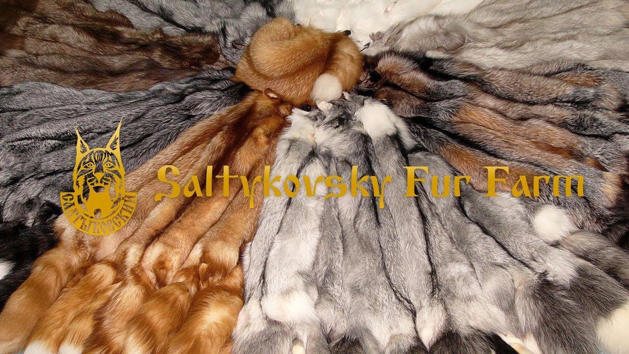 "Fur Presentation — Breeding farm ""Saltykovsky"" - копировать"