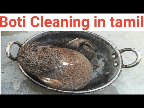 Boti cleaning # Kudal cleaning in tamil