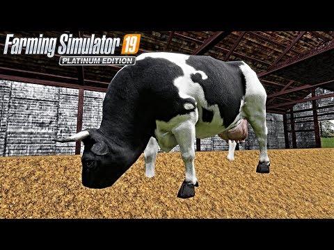LONE OAK FS19! Cows EATING Manure! (yuck)