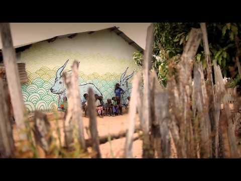 Wide Open Walls: Makasutu 2010