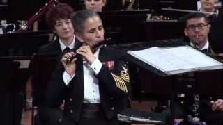 Carman Fantasy- Luellyn Dollard- United States Navy Concert Orchestra