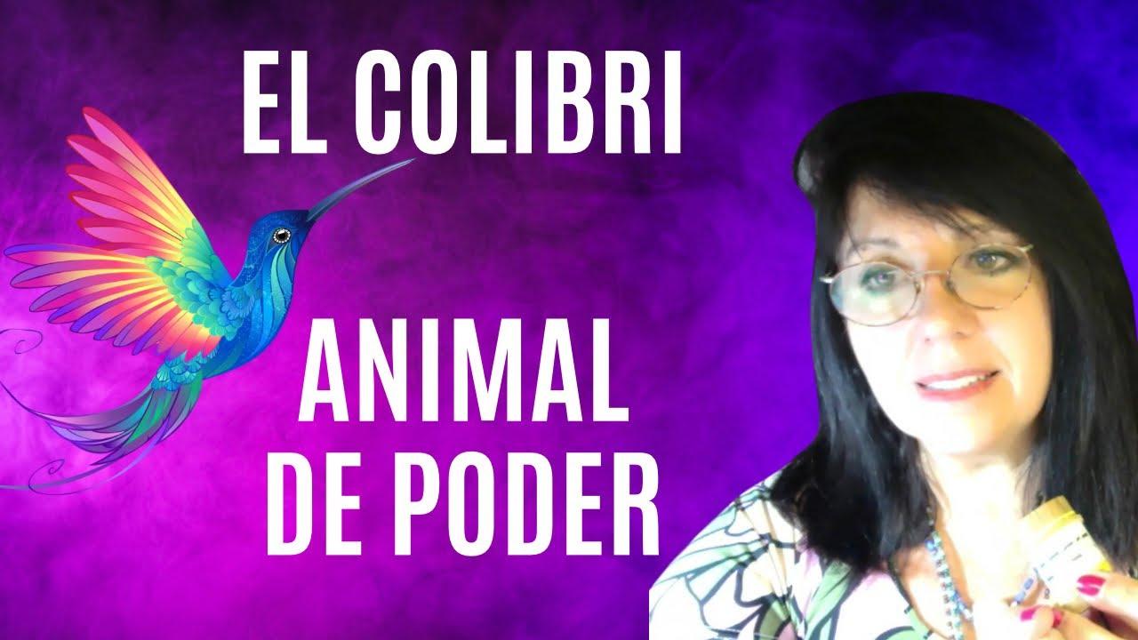 5*- 21 Mensajes diarios para meditar en la Rueda Sagrada: RESPONSABILIDAD, medicina DE Colibrí