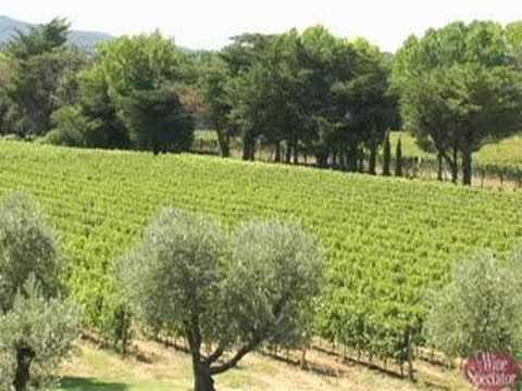 Gaja in Tuscany l Wine Spectator