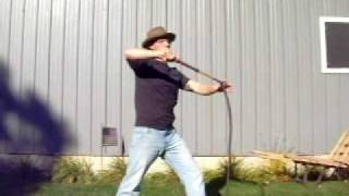 Bullwhip Cracking: the slow figure 8