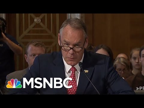 Shame Tempers Shopping For Friendlier Inspector General For Ryan Zinke | Rachel Maddow | MSNBC