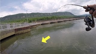 Fishing the Raccoon Mountain Pump Station (Surprise Catch!)