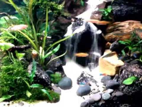 Aquascape two sandfall funnycat tv for Aquarium waterfall decoration