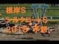 根岸S&シルクロードS予想2018