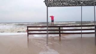 видео Голубицкая