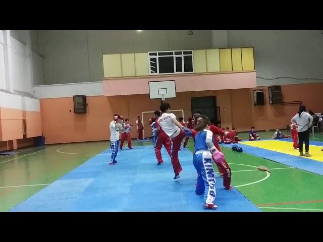 Kick boks mehmet cizmelioglu