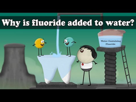 Why Is Fluoride Added To Water? | #aumsum