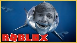 I AM A DANGEROUS SHARK! -English Roblox: Shark Bite