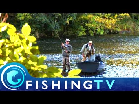 Fishing for Salmon on the River Tweed - Fishing TV