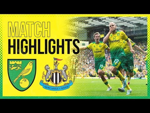 Highlights Norwich City 3 1 Newcastle United Teemu