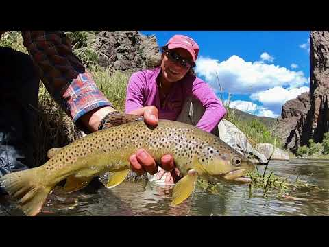 3 Great Days In The Black Canyon Of The Gunnison River  Fishing Salmon Flies