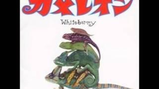 Whiteberry - Kakurenbo.