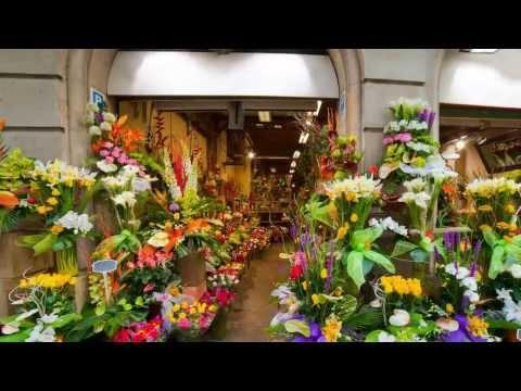 Florist Parkersburg WV - Flower Shops Deliver Anywhere