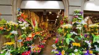 Florist Parkersburg WV - Flower Shops Deliver Anywhere