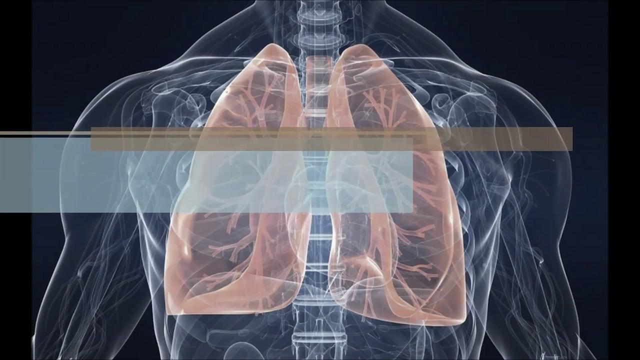 Röntgen a tüdőben férgekkel
