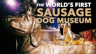 The World's First Sausage Dog Museum | Dackelmuseum