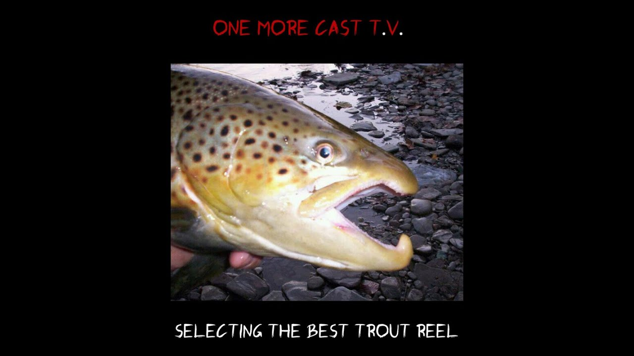 Trout fishing best reel for trout youtube for Best trout fishing in the us