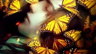 Little Dragon - Butterflies