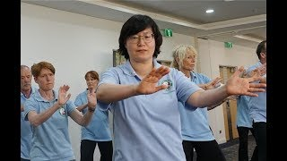Professor Rhayun Song Interview - Tai Chi Research and the Institute