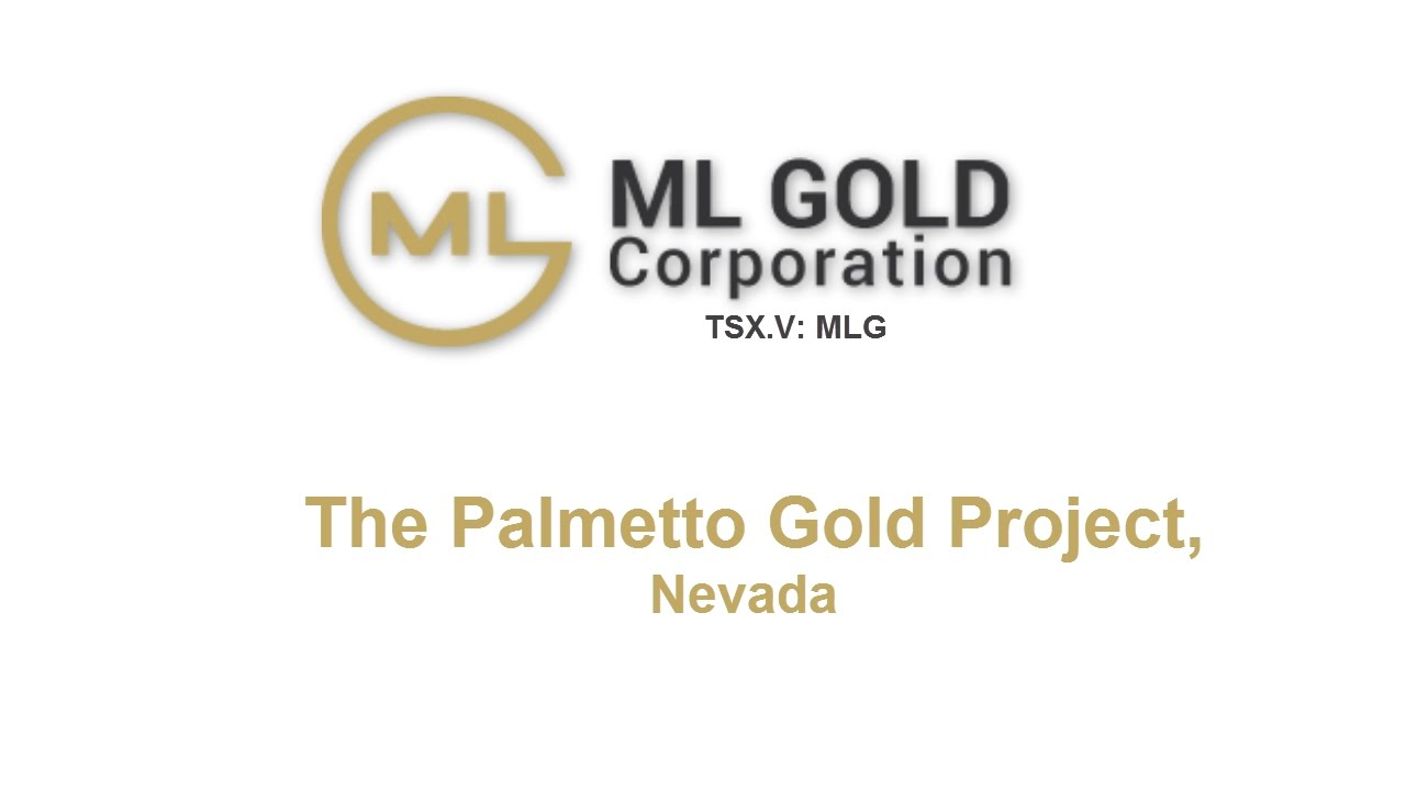 palmetto project With over 40 years of experience, palmetto gba provides technology, training, finance and customer service solutions to ensure your organization.