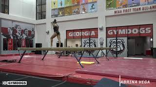 Georgia Gymnastics Intrasquad