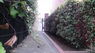 Vidéo 4K avec le Sony Xperia Z2