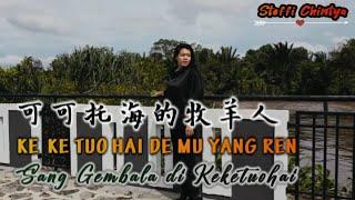 Ke Ke Tuo Hai De Mu Yang Ren《 可可托海的牧羊人 》 - 王琪  Lirik Terjemahan | Steffi (cover)