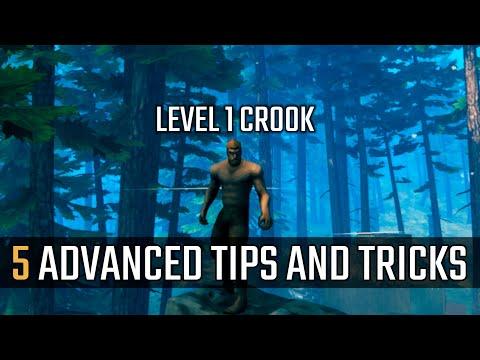 Advanced TIPS and TRICKS for Valheim #1