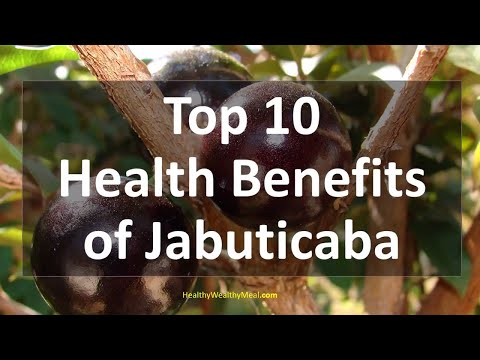 Top 10 Health Benefits of Jabuticaba | Healthy Wealthy Tips